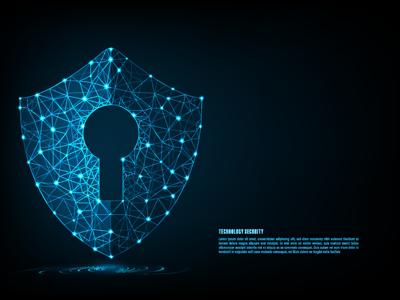 1.9 Yöneticiler İçin Temel Siber Güvenlik