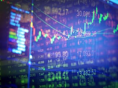 12.2 Sermaye Piyasası Araçları